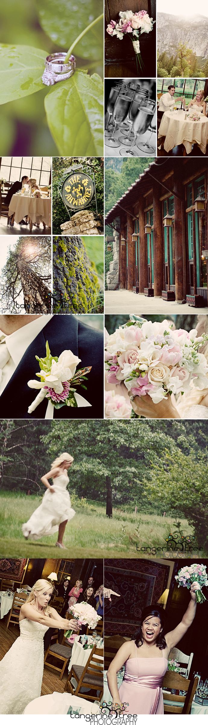 Yosemitewedding21