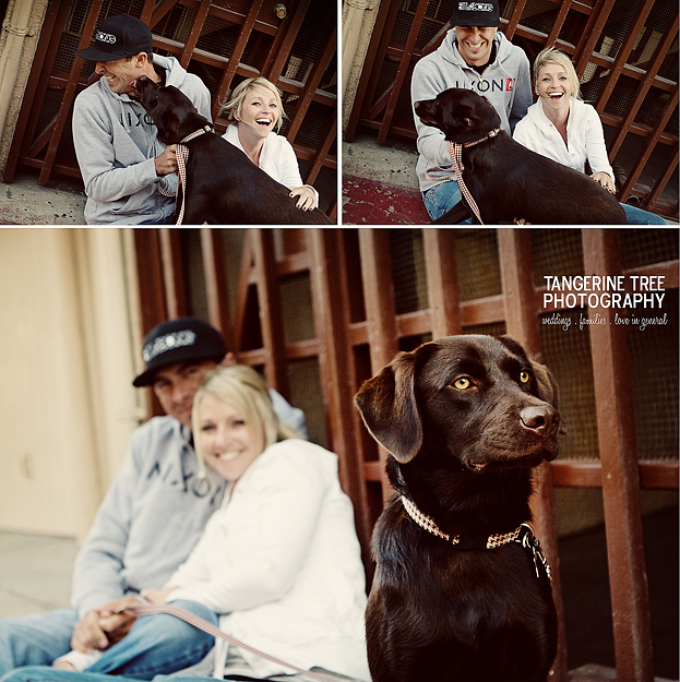 Couple with dog engagement photography