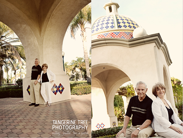 Anniversay photography session 50 years2
