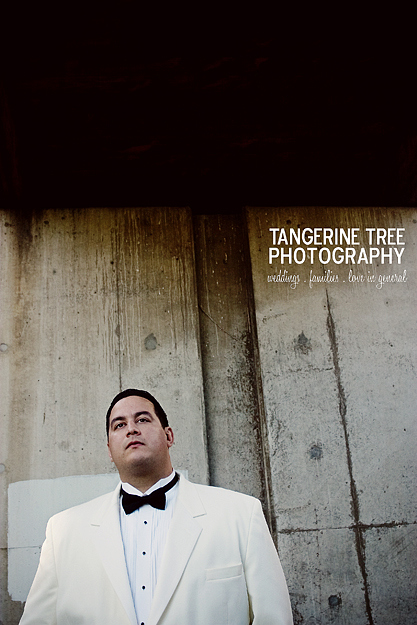 Modern groom san diego tangerine tree photography