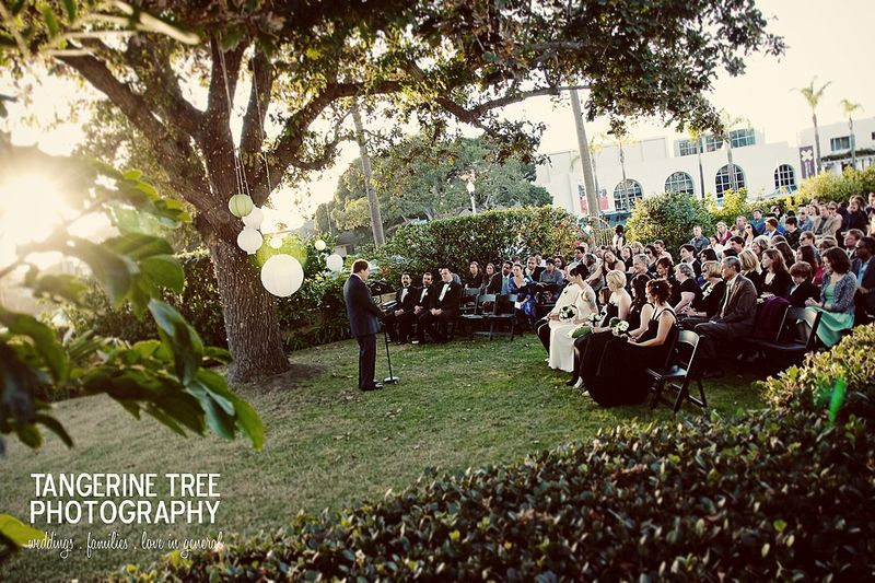 Tangerine tree photography san diego womens club