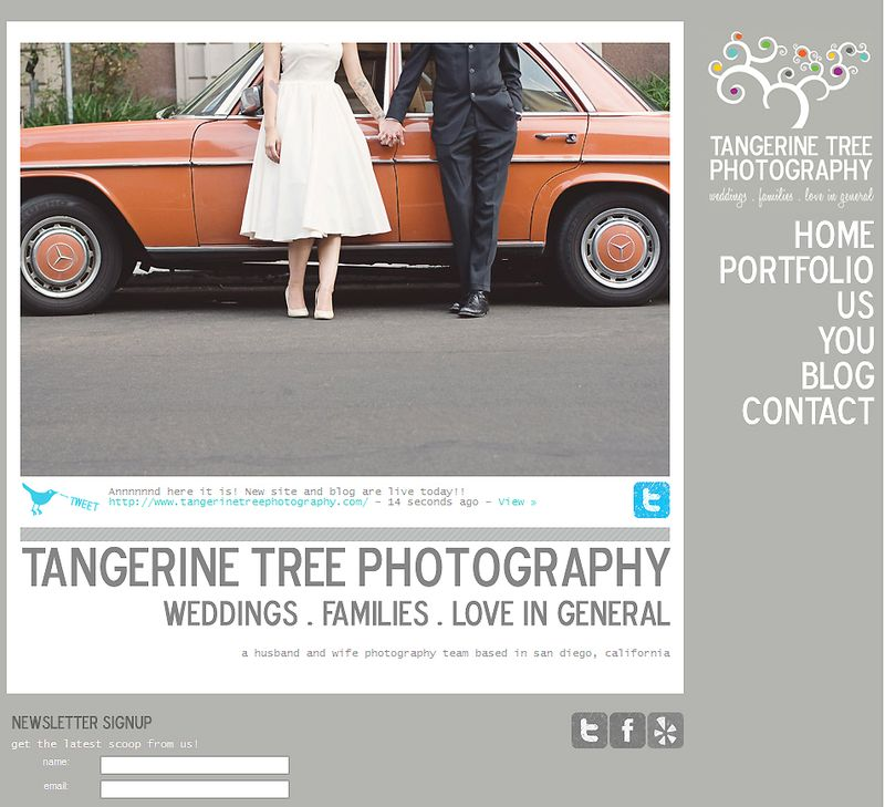 Tangerine tree photography -new site and blog